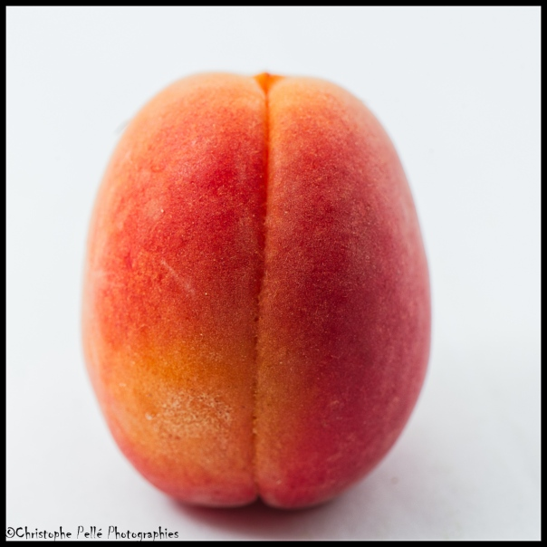 abricot (1)
